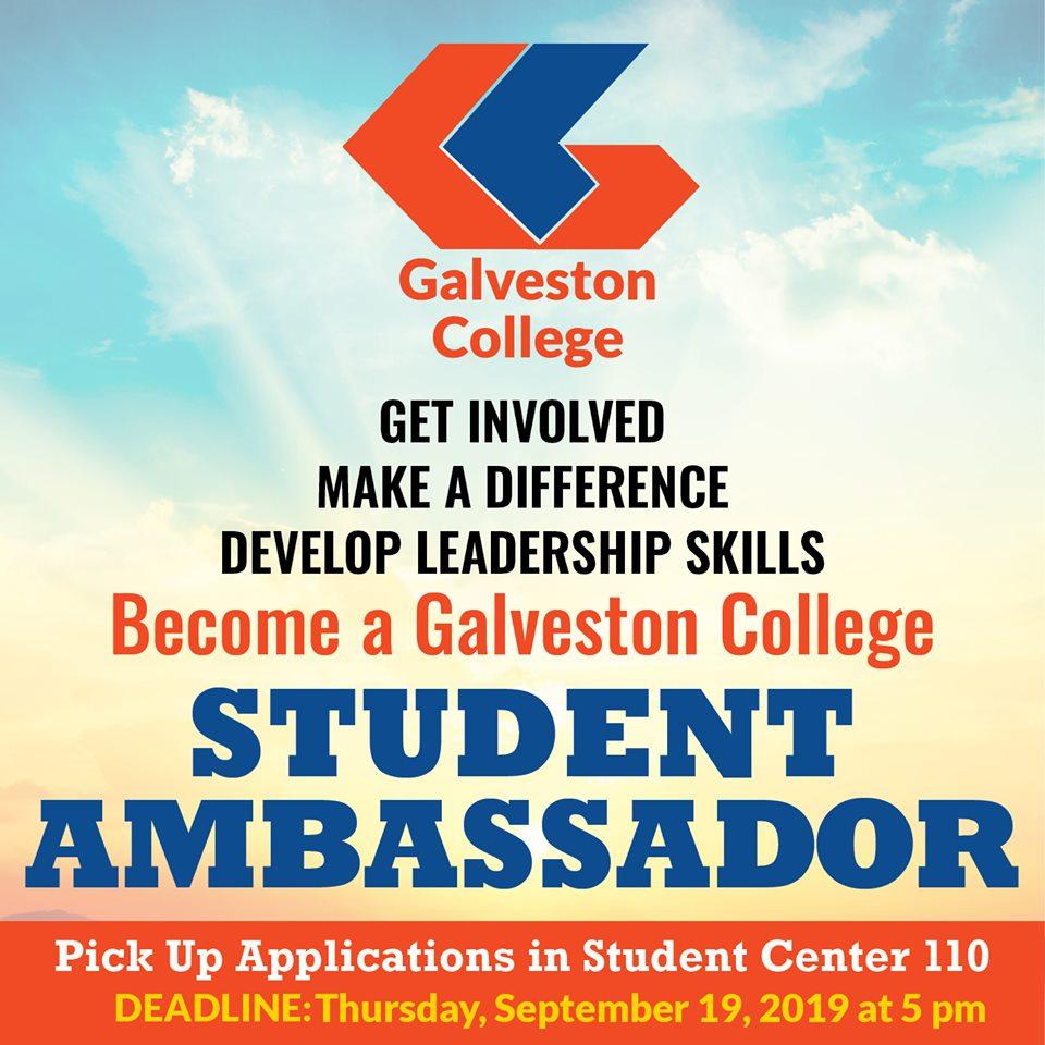 Student Ambassadors Graphic