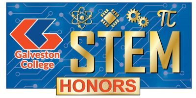 STEM Honors Icon